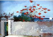Image: Wall, Nassau by Winslow Homer